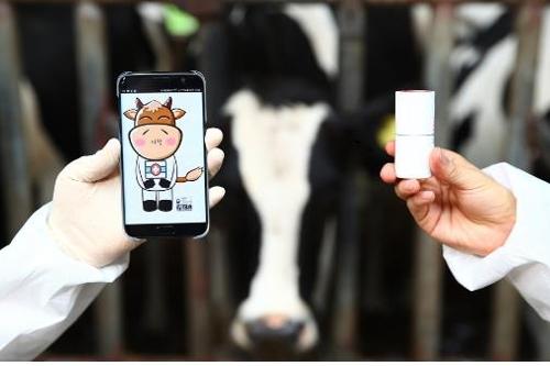 가축 생체 정보 수집 장치와 스마트폰 앱.jpg