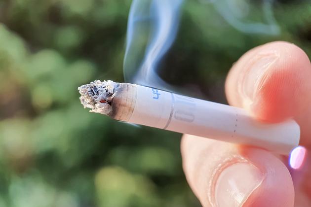 니코친 효과 검증한다.jpg